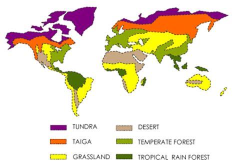 Desert Plants Essay - 2191 Words - studymodecom